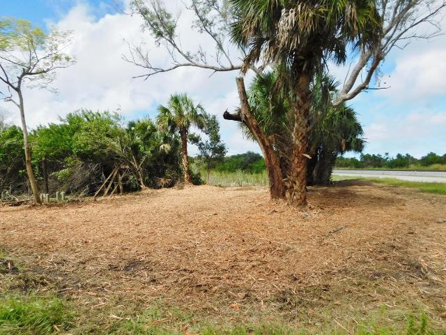 0000 Berry Rd / Old Dixie Hwy Grant, Fl 32949