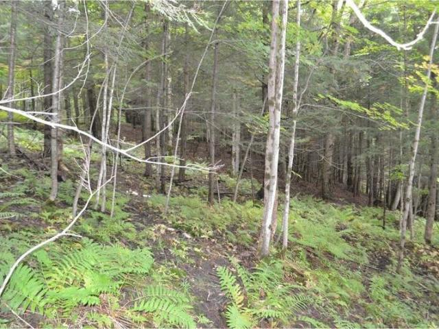 0 Off Valley View Circle, Barre, Vt 05641
