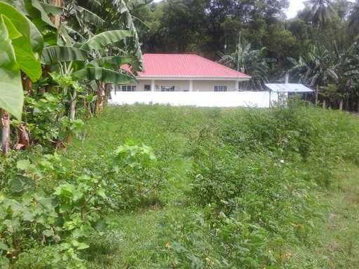 1000 Square Meter Lot For Sale Dumaguete