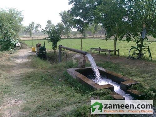 10 Acre Agricultural Land For Sale In Depalpur Okara Road