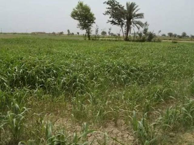 10 Acre Agriculture Land With 1 House And 1 Cattle Farm