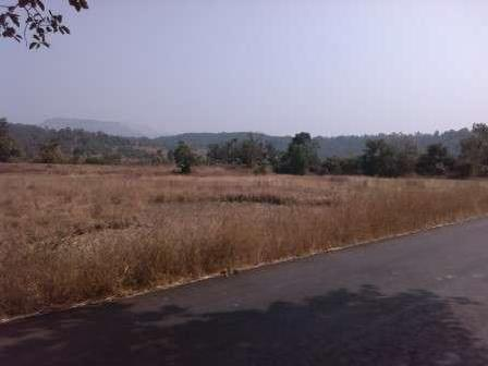 11 Acre Nh93 High Way Touch Land For Sale 6km Near Raigad pali @14lac/acre