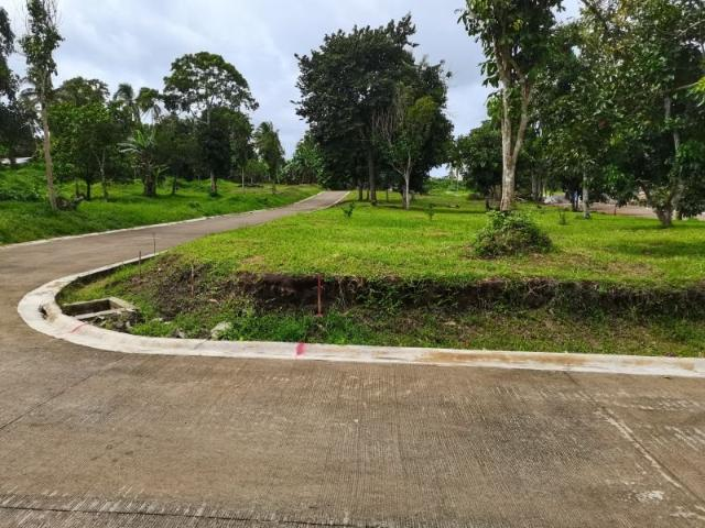 125 Sqm Lot For Sale Ready For Occupancy Lot In Mendez