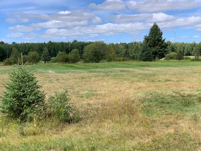 13 Acres For 7 Family Mbrs, Friends Or Buddies Bigfork, Mn