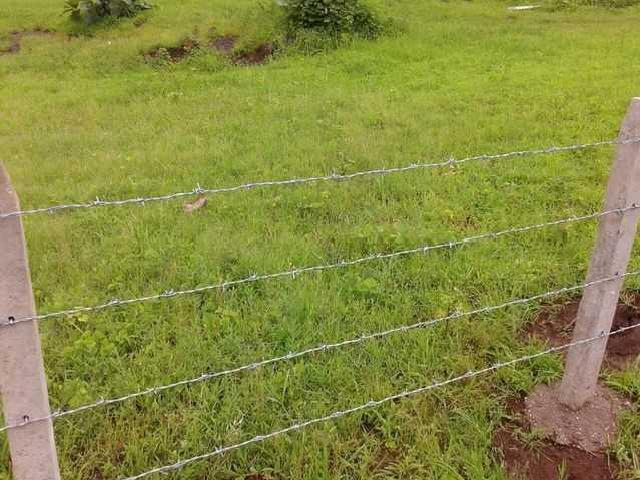 1500sq.ft. Na Plots Close To Mumbai Just For Rs.5,98,000/ With 36interest Free