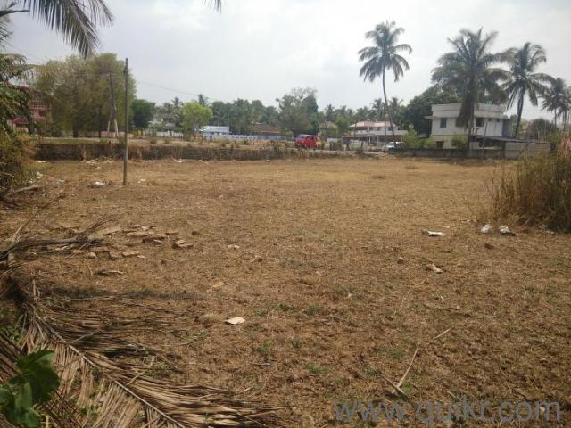 19166 Sq. Ft Plot For Sale In Alathur, Palakkad