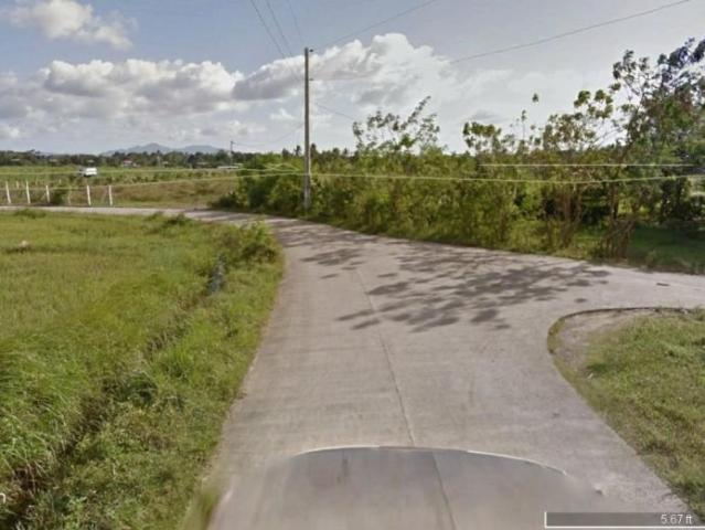 1 Hectare Operational Poultry Farm In Rosario Batangas