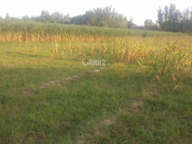 1 Kanal Residential Land For Sale In Faisalabad Tech Town