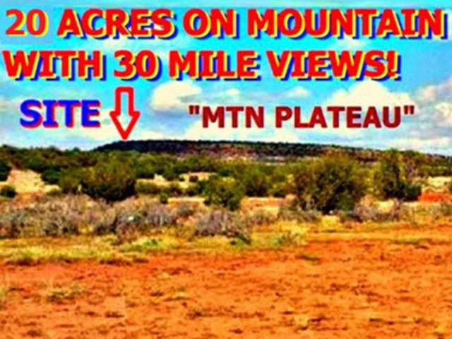 20 Acres On A Mountain Plateau In T. Show Low