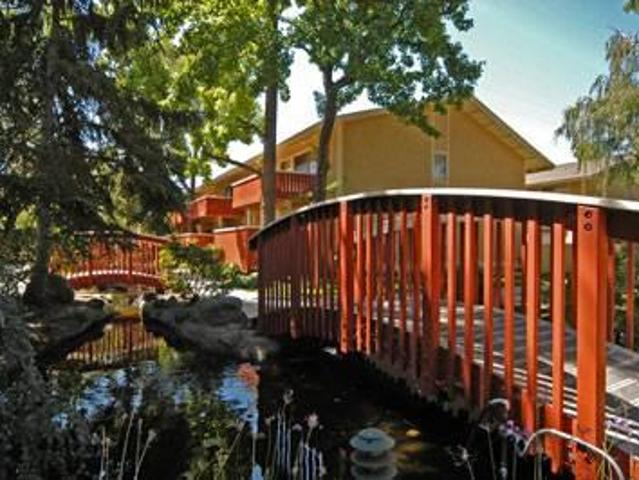 $2185 / 1br 800ft² Amazing View Overlooking Koi Pond & Pool. All New Flooring!