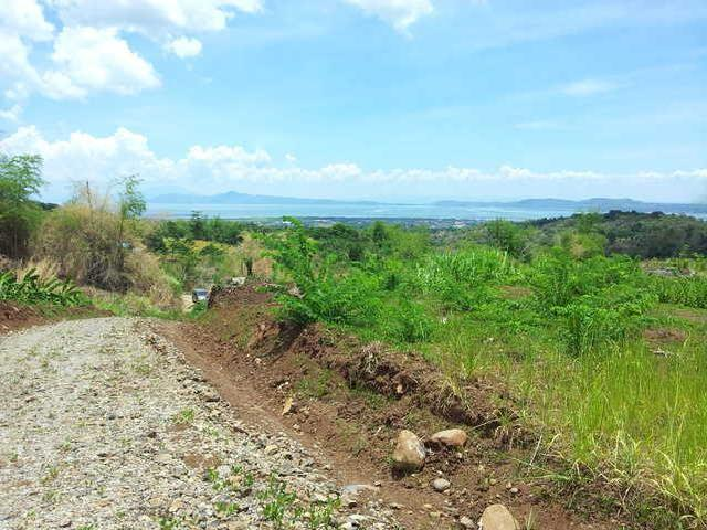 22 Ha. Vacant Land Lot Property Tanay Rizal Pillila For Leisure Development