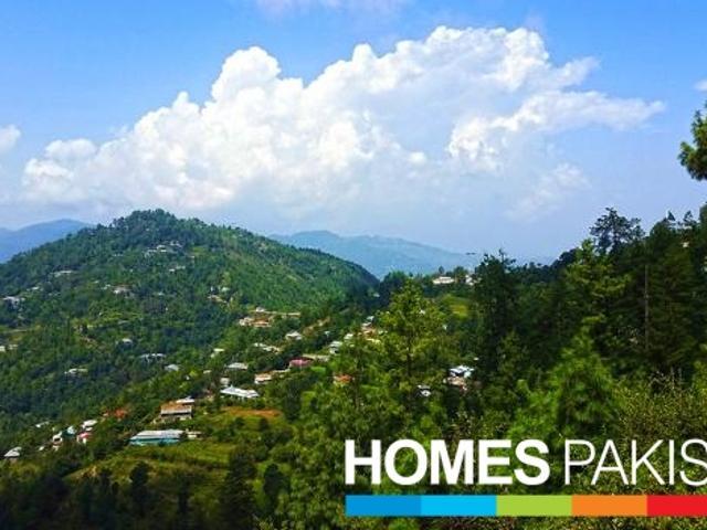 23 Kanals Of Prime Land For Sale In Patriata New Murree Located Off Main Patriata Road
