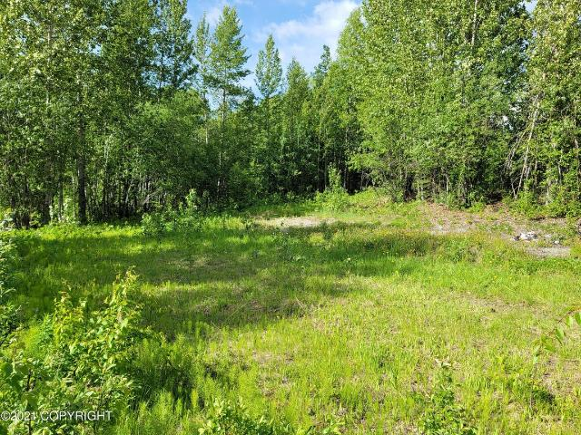 24224 Parks Highway Willow, Ak 99623