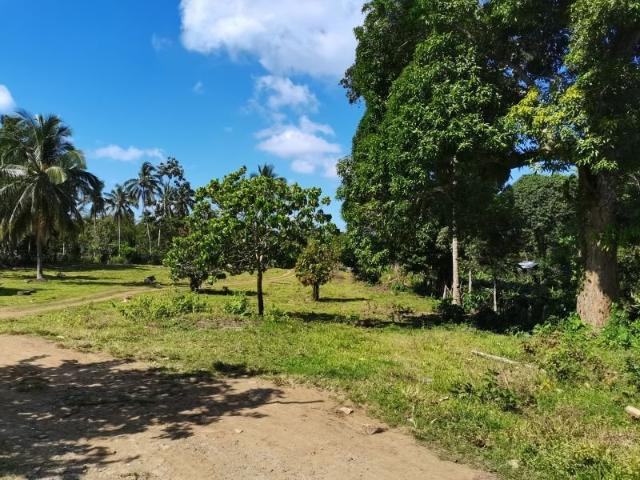 250 Sqm Residential Lot Near Resorts Of Indang