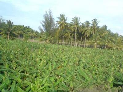 2.57hectares For Sale At Gudu