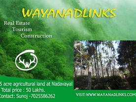 Land agricultural 2 lakhs - Mitula Homes