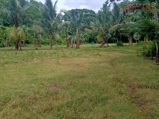 2.5 Hectares Clean Title Lot Near Highway And Beaches/resort