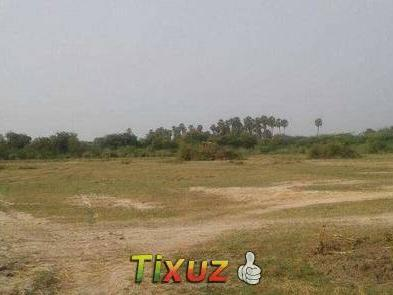 2 Acre Punja Agricultural Land For Sale At Cheyyur Near Chennai