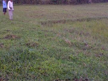 2 Hectare Land