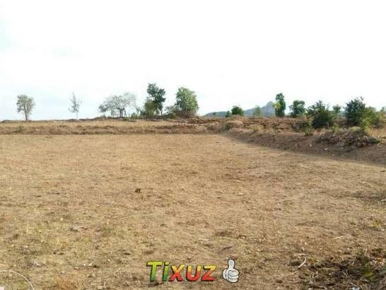 3 Acre Agriculture Farm Land For Sale Near
