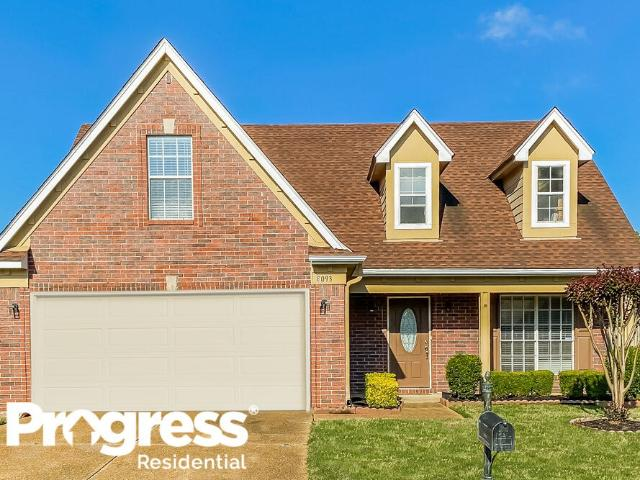 3 Bedroom Home For Rent At 8093 Conridge Dr, Collierville, Tn 38125 Lakes Of Forest Hill
