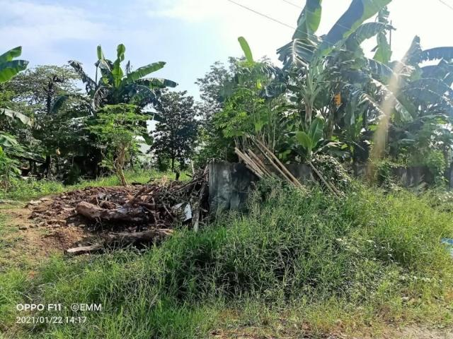461sqm Residential Vacant Lot In Paranaque City
