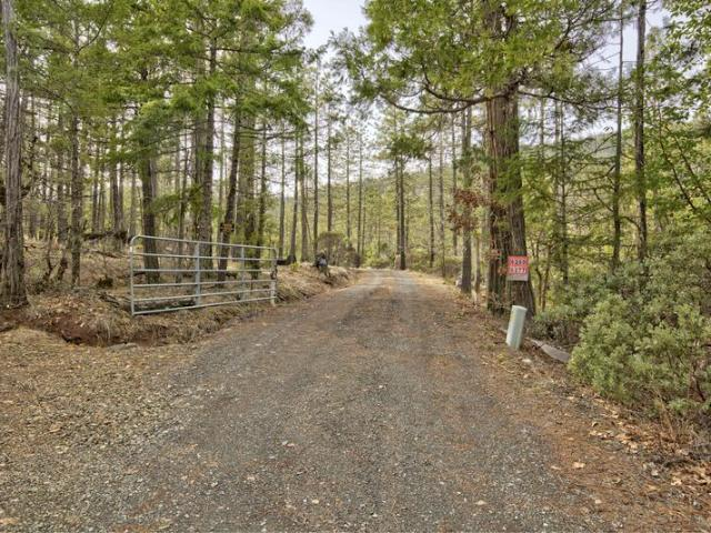 472009 Property, Cave Junction, Or 97523