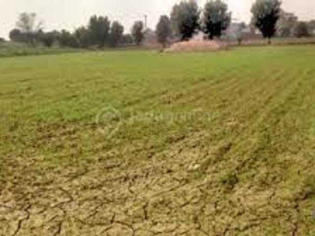 50 Acre Agriculture Land Sale Link Khurianwala To Jaranwala Road