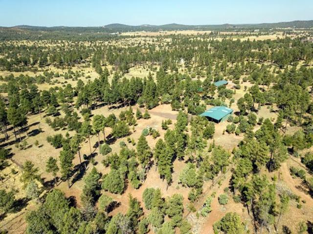 5 Acre Horse Property In The Pines Bordering National Forest