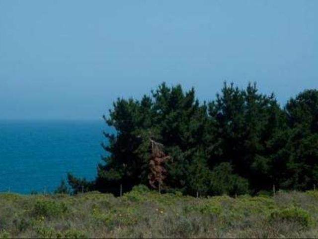 5ta Region,parcela 5000 Mts2,vista Al Mar,en El Paraiso De Los Quinquelles