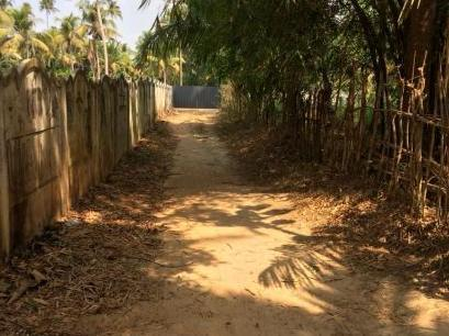 67082 4 Sq  Ft  Agricultural Land For Sale In Irinjalakuda, Thrissur
