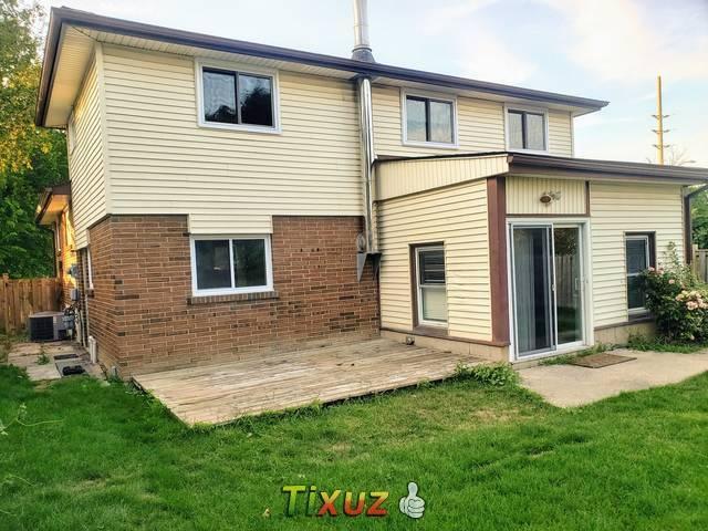For Rent Apartments 2 Bedroom Basement Ajax Apartments For Rent In Ajax Mitula Homes