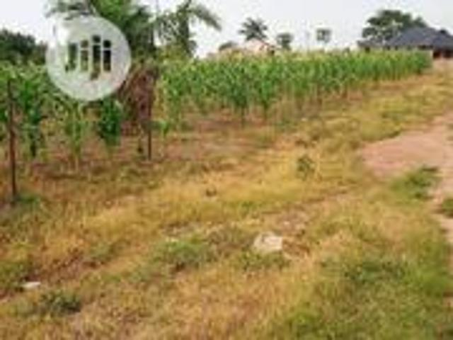 A Open Space Land In A Good Location In Ososgbo