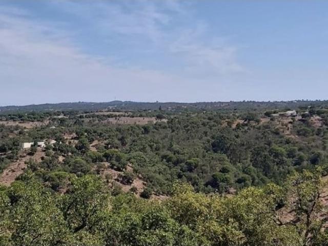À Venda Fazenda Grândola, Portugal
