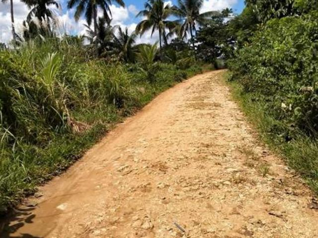 Agricultural Lot For Sale In Sierra Bullones