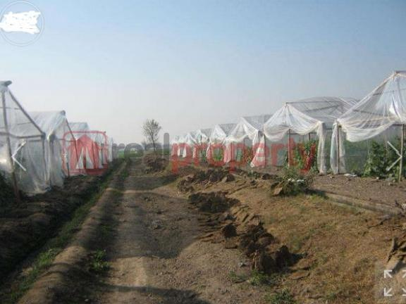 Agriculture Land At Good Price