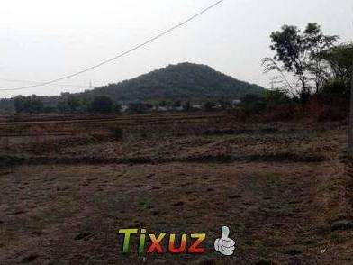 Agriculture Land Sell 8 Acera Sell