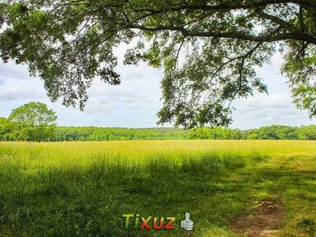 Agriculture Lands For Farm House For Sale Form 7 Morusi Gharo Mirpur S
