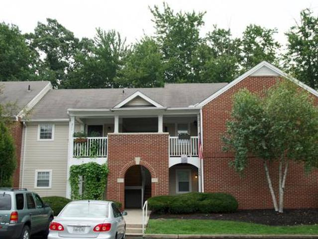 Apartment Share Get Beautiful Large Bedroom In Spacious 2 Bedroom Anderson Township