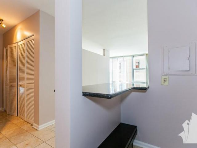 Apartment Unit Chicago Il For Rent At 1600