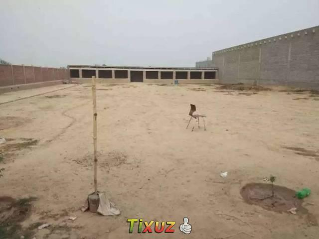 Available For Rent Near Sadhar Bypass Jhang Roadfaisalabad