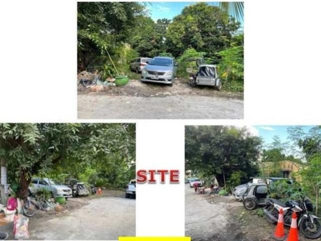 Bank Foreclosed, Vacant Lot, Vermillion Street, Camella Springville Central Phase 1, Brgy....