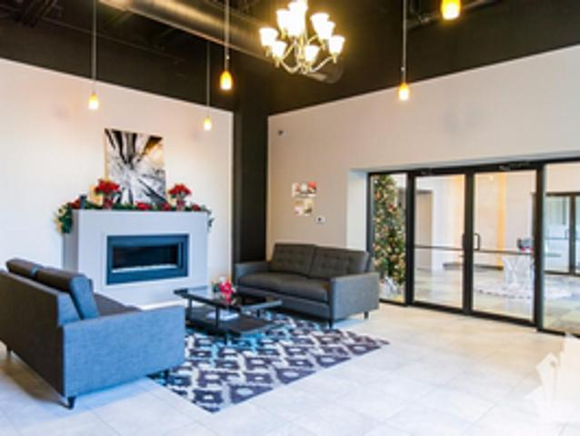 Beautiful Renovated New 2br Available Now