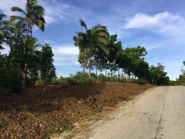 Bohol Hills Estates Residential Lots With Average Of 500 Sqm