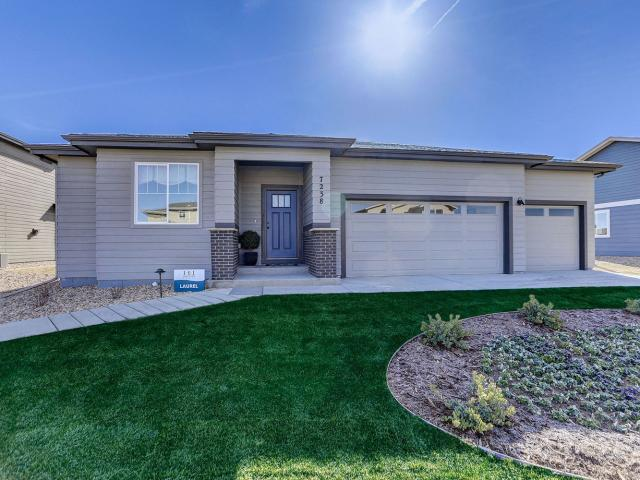 Brand New Home In Wellington, Co. 3 Bed, 2 Bath