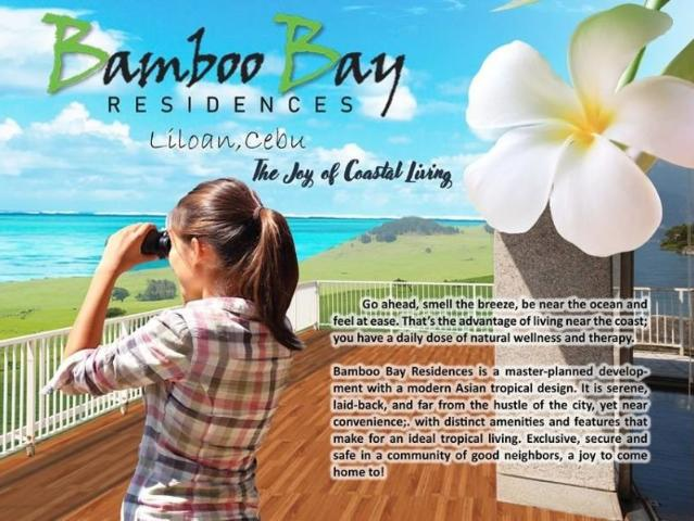 Brand New House With Ocean View And Just 30 Mins. Drive To Cebu City. Exclusive, Secure An...