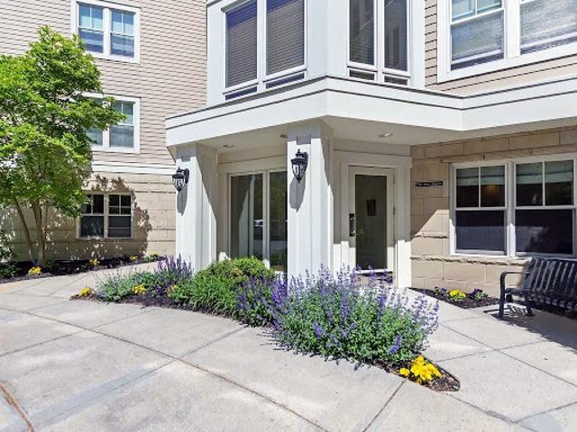 Brookline, Stunning, Sun Filled, Move In Ready Two Br