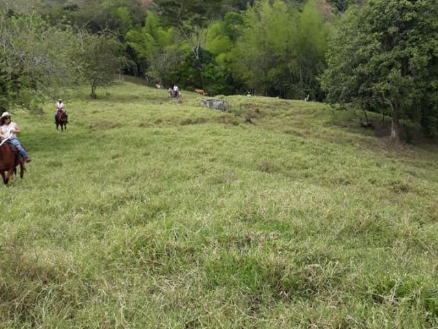 Casa, Venta De Finca Km6 Obando Valle, Obando