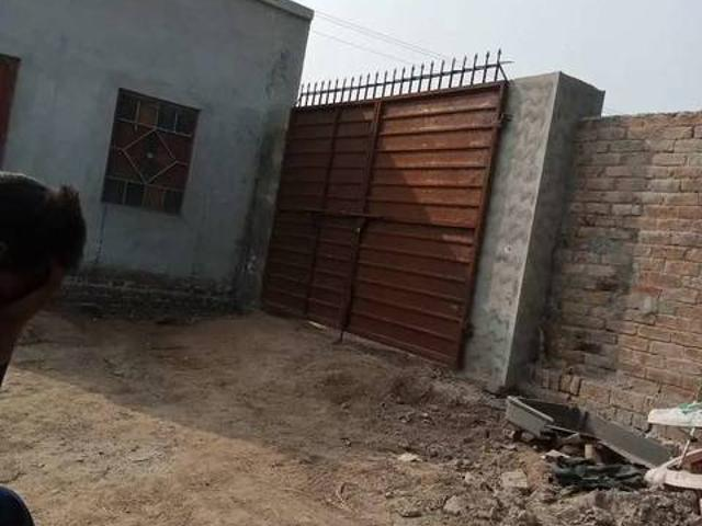Cattle Farming Shed For Rent On Urgent Basis