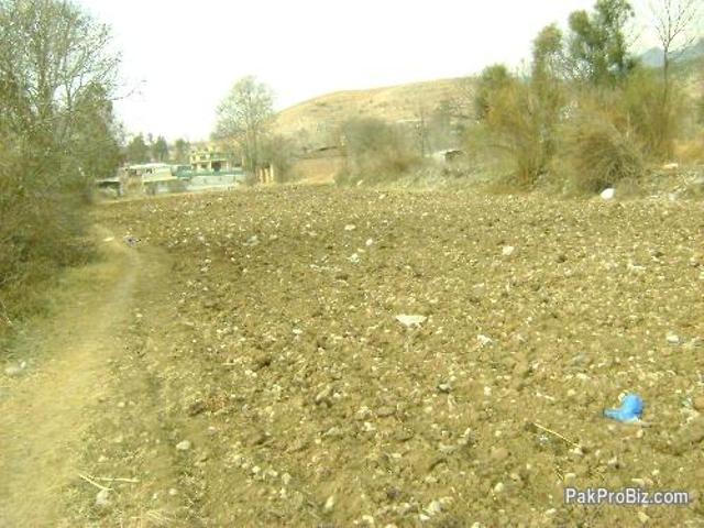 Cheap Plats For Sale Location Nawan Shehr Abbottabad
